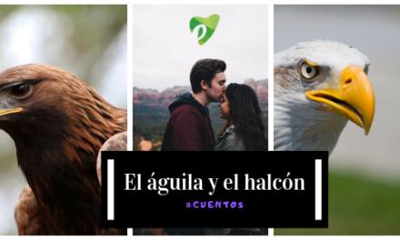 El águila y el halcón
